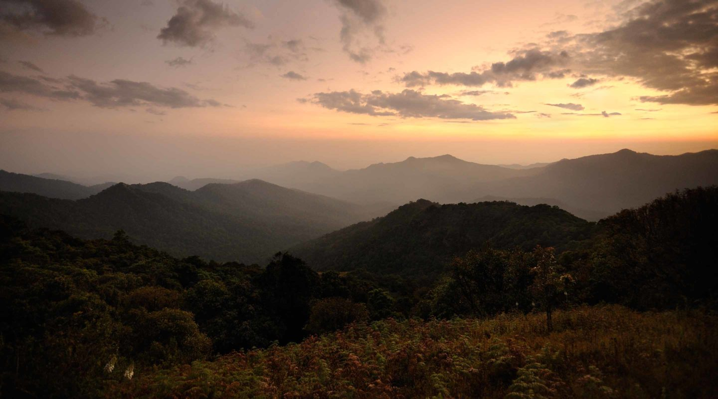 Coorg 12
